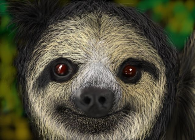 how to draw a sloth face easy