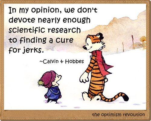 - Calvin & Hobbes