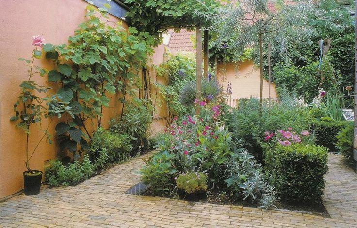 Binnentuin in Mediterrane sfeer met gebakken Waaltjes.