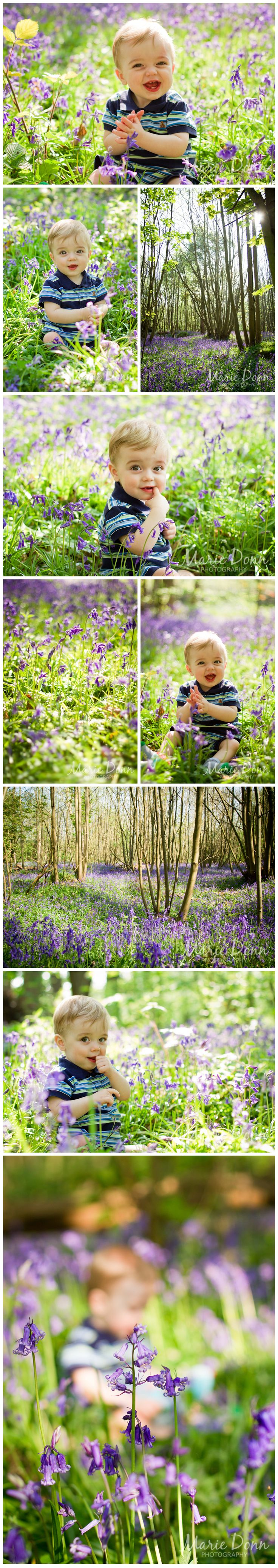 One of mine!  Bluebells, blue, Essex, child photography  (c) Marie Donn Photography