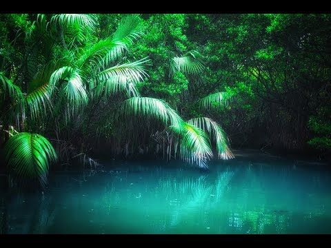 Binaural Beats: 4.5 Hz | Stress Relief - Balance Your Mind | Cleanse Ene...