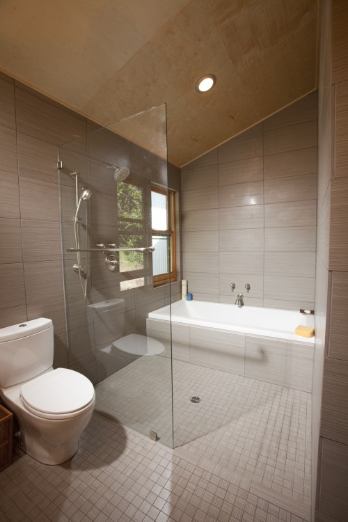 Wet Room Shower And Tub Together