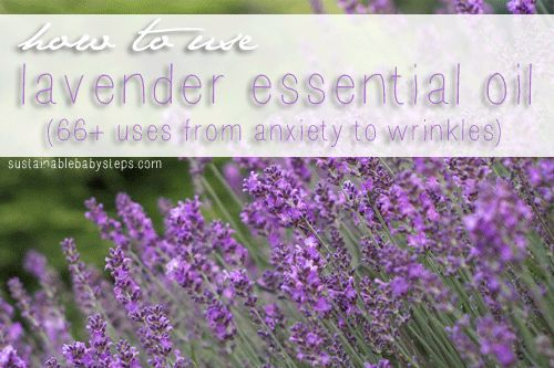Pure lavender oil has many health benefits and uses, but only if the quality is high.