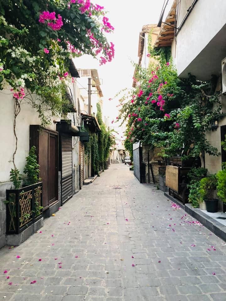 Pin By Rami On Natural Syria Damascus Syria Damascus Beautiful Places