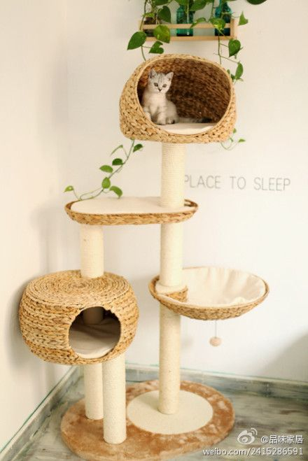 creative home for kitties/puppies