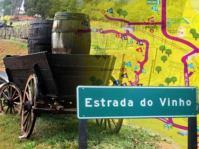 Rota do Vinho de São Roque: uma viagem cheia de sabores