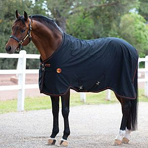 Rambo Ionic Le Sheet Is A Perfect Lightweight Rug To Keep Your Horse Protected Throughout The Seasons Make This Functional New Go Staple
