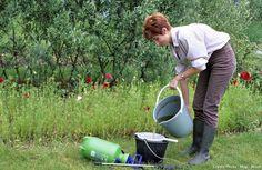 Associez purin de consoude et purin d'ortie en un même emploi : à eux deux, ils couvrent les besoins de presque toutes les plantes potagères. #lesbonsgestes #jardin #garden