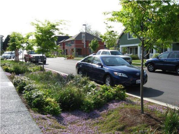 Streetside swale Seattle - Noue (fossé) — Wikipédia
