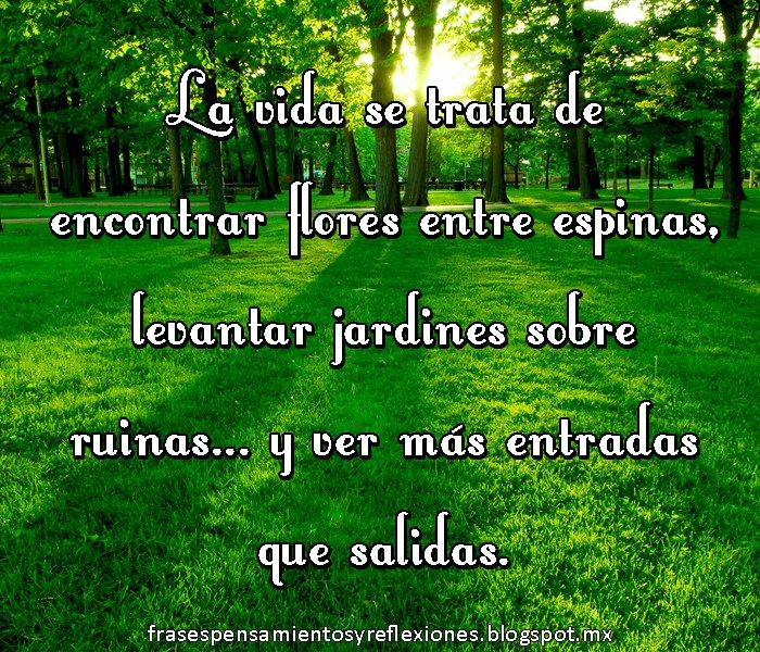 124 best images about imagenes con frases on pinterest - Imagenes jardines ...