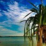 Magical Moments - Karimunjawa Islands