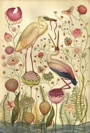 botanicalBotanical Illustration, Birds Gardens, Ears Birds, Inspiration, Lindsey Carr, Antiques Book, Art, Prints, Lindseycarr
