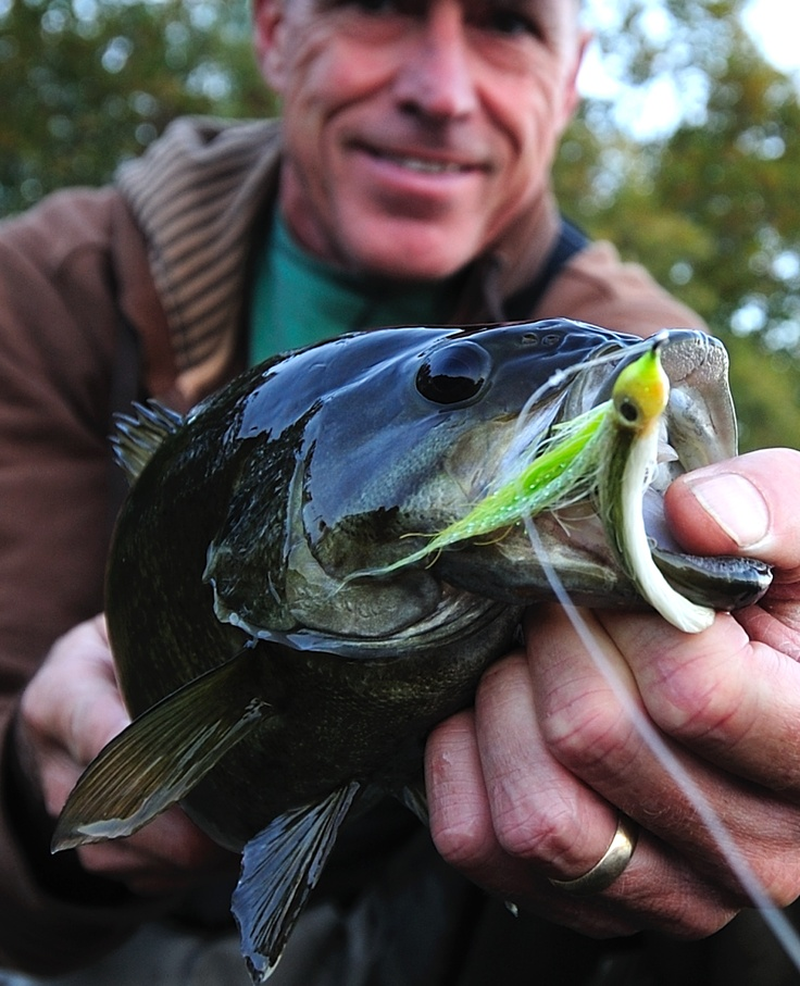 131 best smallmouth bass images on pinterest for Bass fly fishing