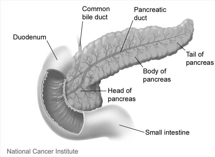 End Stages of Pancreatic Cancer
