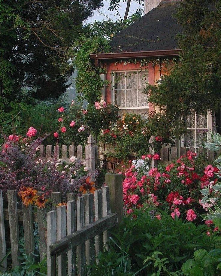 Сад в деревне фото