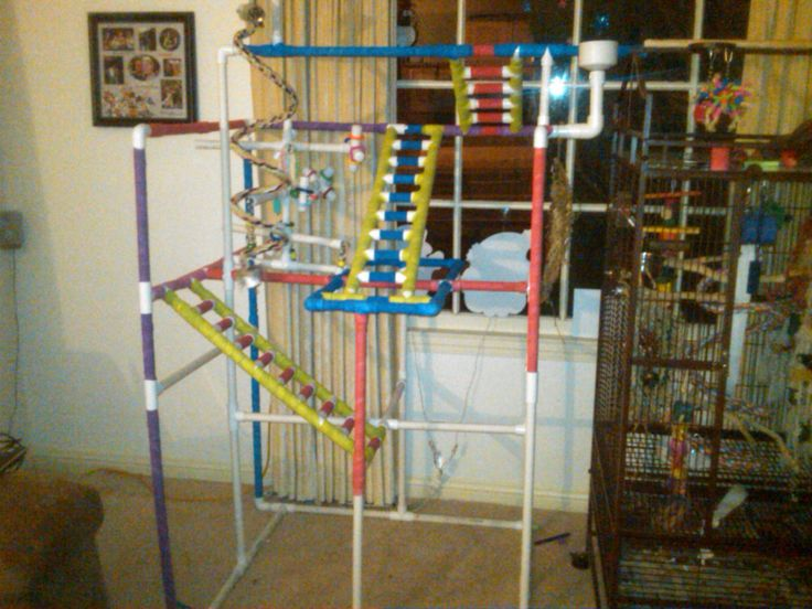 How to Build Your Parrot a Playstand