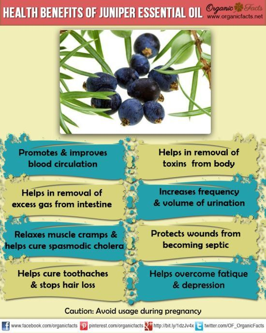 The health benefits of Juniper Essential Oil can be attributed to its properties like anti septic, sudorific, anti rheumatic, depurative, anti spasmodic, stimulating, stomachic, astringent, carm...