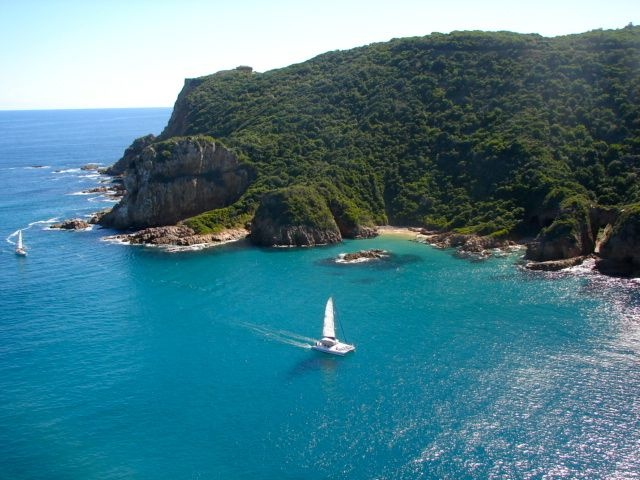 magic!  The Garden Route in South Africa.