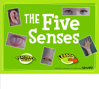 The Five Senses Smartboard: Smartboard Lesson, Classroom Categories, Smartboard Science, Smartboard Hoạt, Classroom 17, Science 5 Senses, Body 5Senses Feelings, Smartboard Classroom, Senses Smartboard