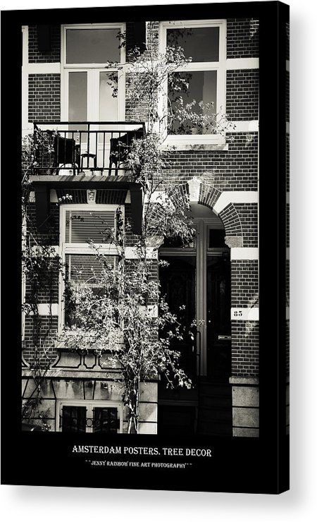 Amsterdam Posters. Tree Decor Acrylic Print by Jenny Rainbow.  All acrylic prints are professionally printed, packaged, and shipped within 3 - 4 business days and delivered ready-to-hang on your wall. Choose from multiple sizes and mounting options.