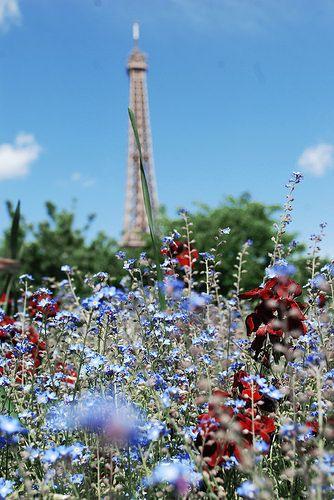 Paris | Flickr - Photo Sharing!