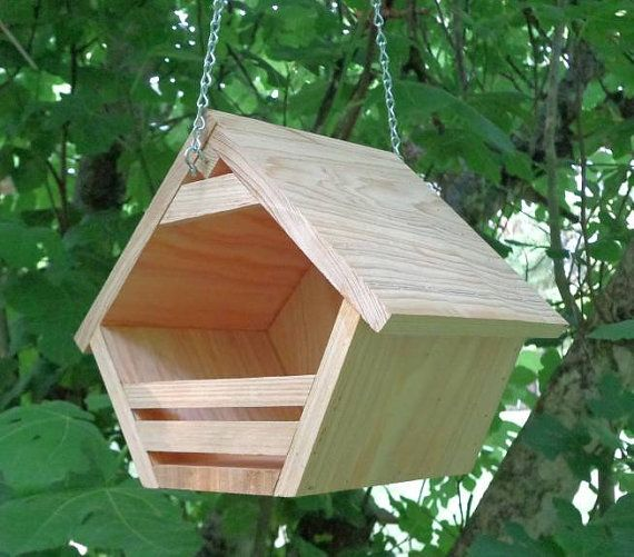 17 best images about birds butterflies bees on pinterest for Dove bird house