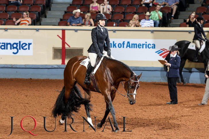 Taylor Searles and homebred She Says Aloha win gold in hunter under saddle at the 2016 Ford Youth World. Watch the team in action here.