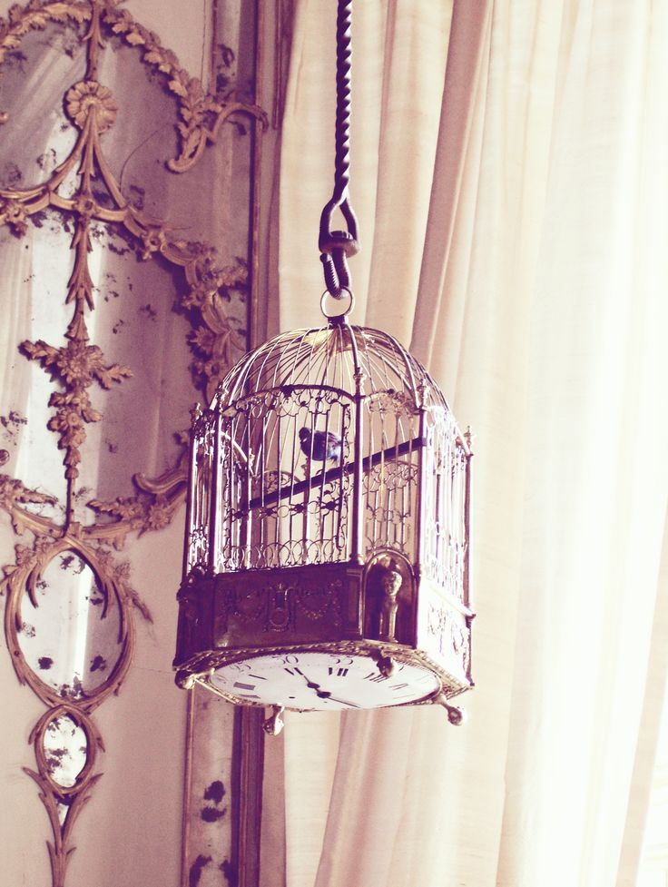 Bird cage with swiss clock  (Royal Palace in Caserta) #bird #cage #clock #sweet