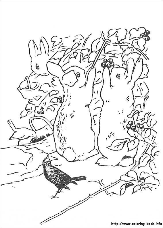 peter rabbit cartoon coloring pages - photo#13