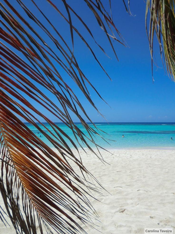 #Samana #sea #beach