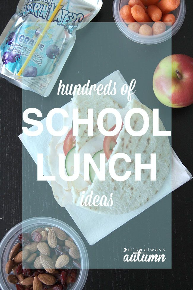 hundreds of school lunch ideas - easy lunches, healthy lunches, gluten & nut free, etc. #sp