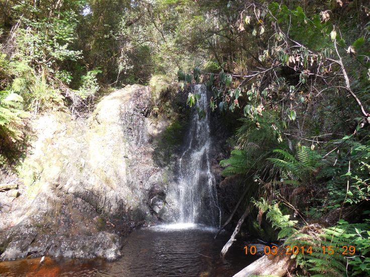 Hogarth Falls, Strahan