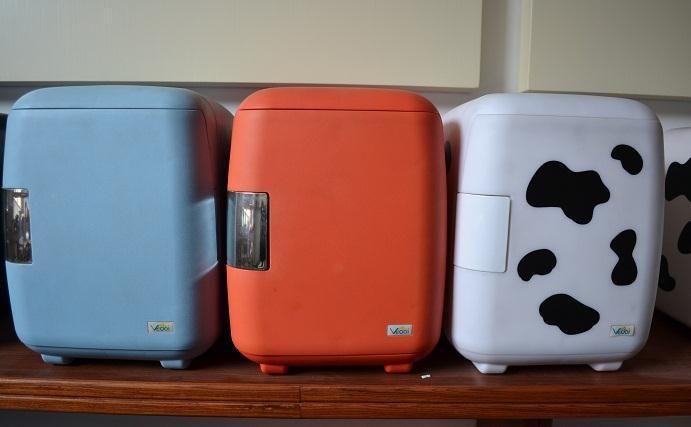 6l cooler bag cosmetics car refrigerator cow refrigerator car dual 220V 12V car cooler and warmer car fridge