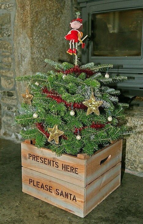 1000+ images about Christmas tree planter decor on Pinterest ...