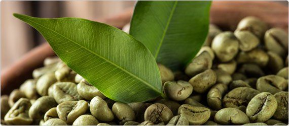 Buy Green Coffee Beans Wholesale
