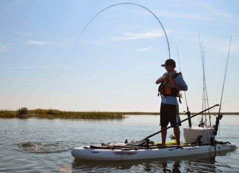 25 best sup fishing ideas on pinterest flats boats for Fishing paddle boats