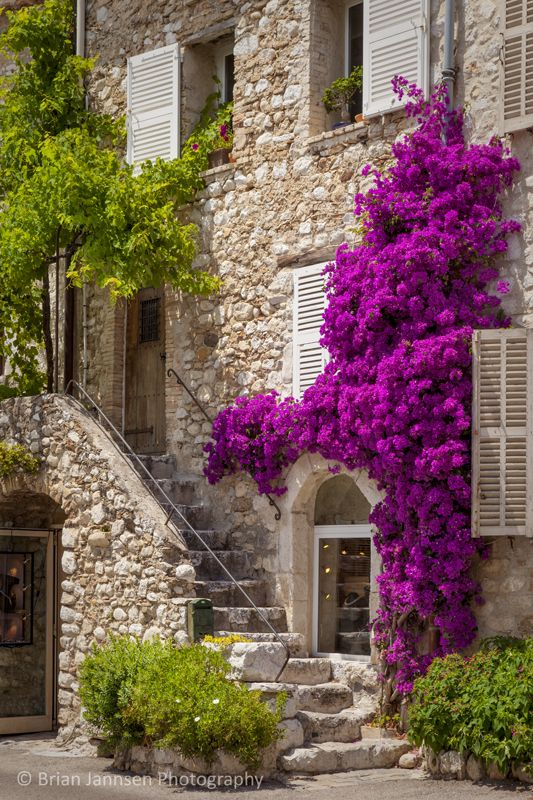 home in St. Paul de-Vence, France. © Brian Jannsen Photography