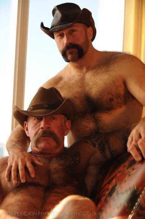 from Winston bear cowboy gay