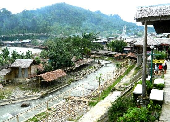 Lower Bukit Lawang