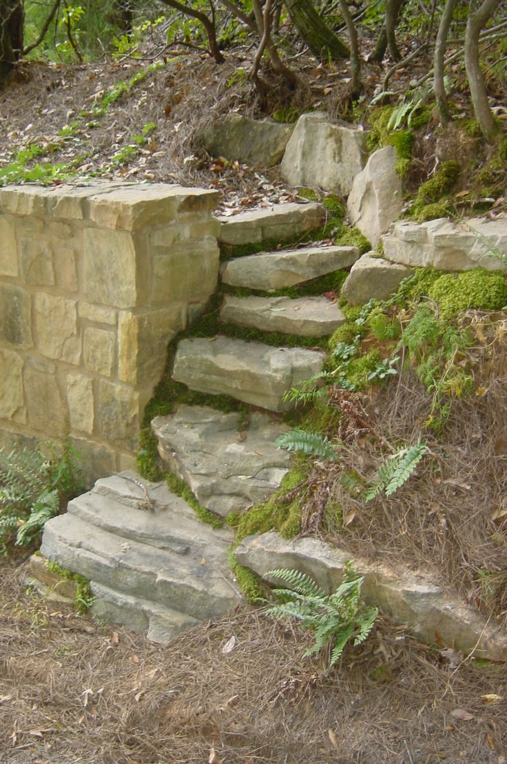 The natural stone steps of a stairway garden feature climb a small - Small Scale Rustic Steps Built By My Friend And Co Worker Beth