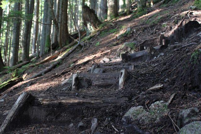 BCMC Trail, North Vancouver