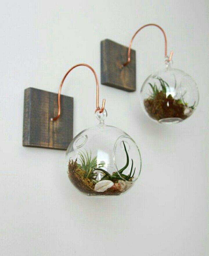 104 Best Images About Terraria On Pinterest: Más De 25 Ideas Increíbles Sobre Jardineras Colgantes En