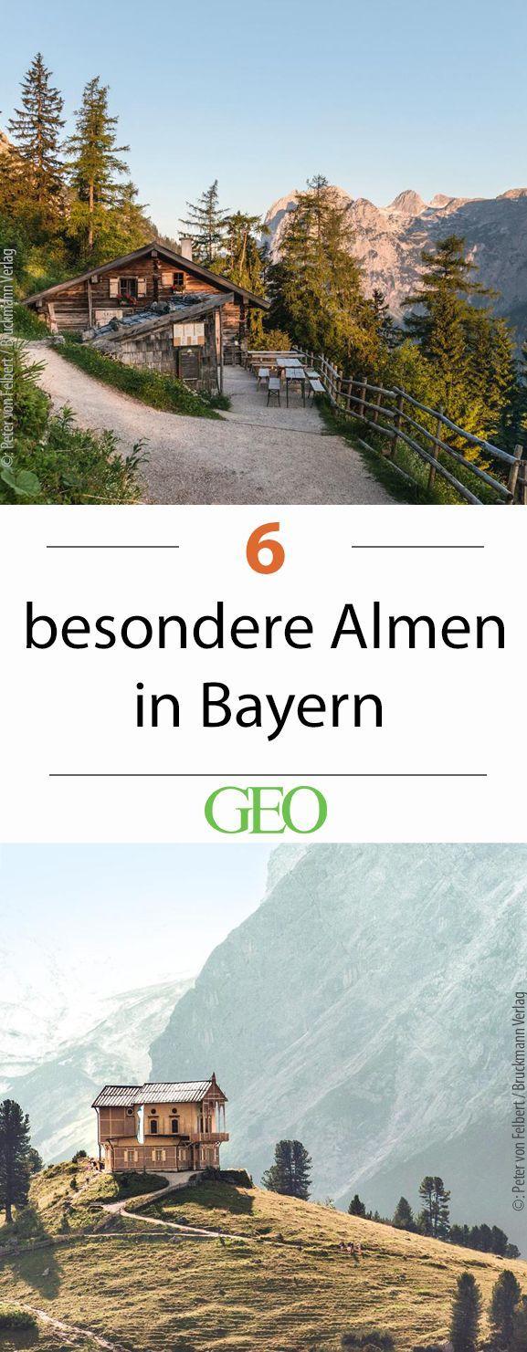 Bayern: Sechs besondere Almen und was Sie dort erleben können