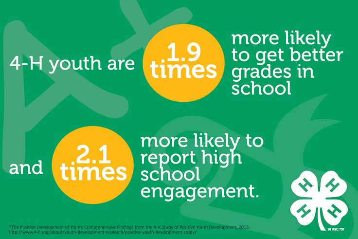 What is 4-H?
