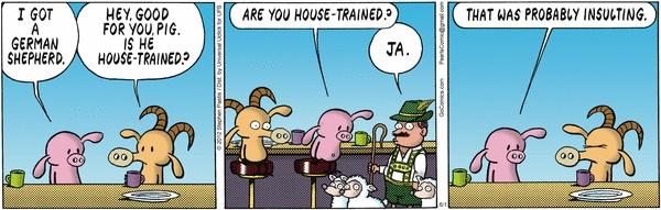 German shepherds, Pearls and Pigs on Pinterest