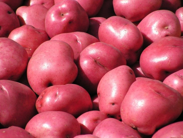 Know Red Potato Nutrition for Diet