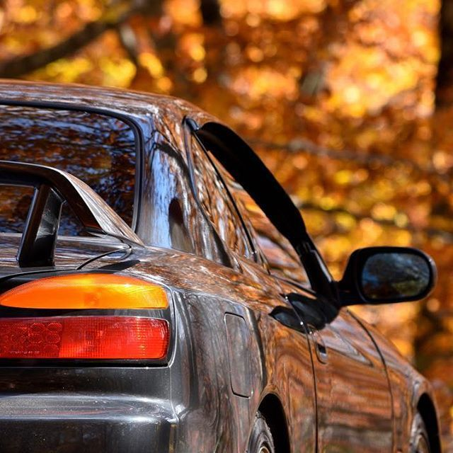 【kk.specs】さんのInstagramをピンしています。 《赤いカーテン #シルビア#silvia#s15#schassis#silviarepublic#car#ドライブ#drive#後ろ姿#back#秋#autumn#紅葉#黄葉#autumnleaves#森#forest#woods#自然#nature#風景#landscape#有峰林道#富山#写真好きな人と繋がりたい#nikon#d7200#55300mm》