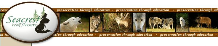 A must do for all! Seacrest Wolf Preserve - Preservation through Education - Wolf Sanctuary and Rescue.