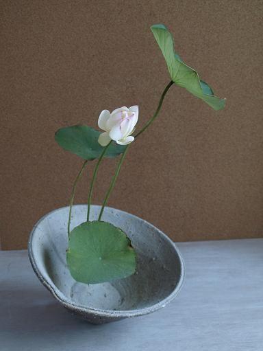 ikebana designs I like. V