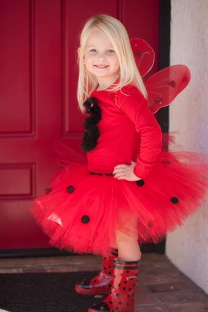 Ladybug Girl Birthday Party, I need this outfit for Alexis 2nd birthday!
